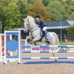 Rider competing in showjumping