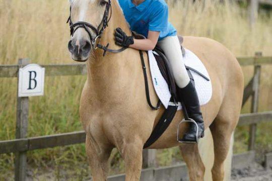 Palomino pony and young rider