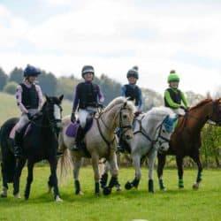 Pony team