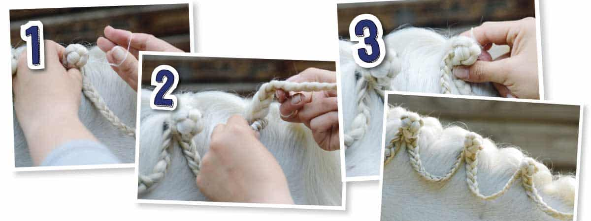 How to do scallops plait in horse's mane