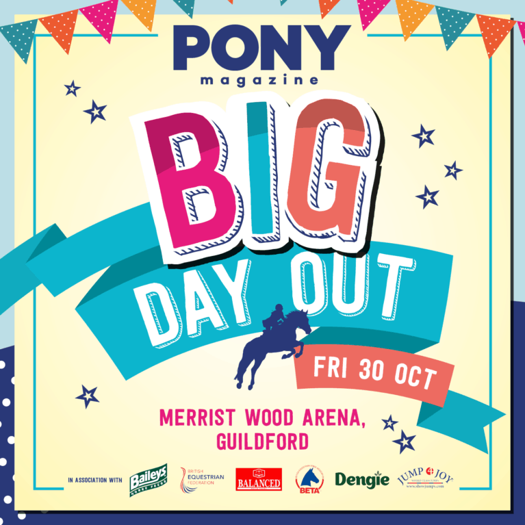 PONY Mag Big Day Out