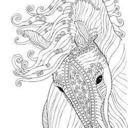 Pony colouring page