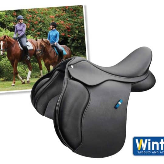 Wintec saddle competition