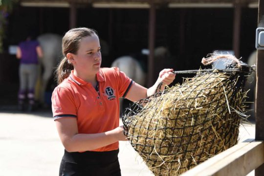 Girl tying up haynet
