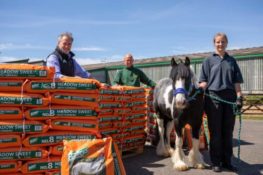 Baileys donates feed to World Horse Welfare