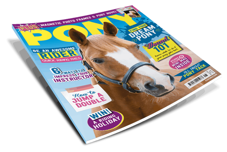 August PONY Magazine