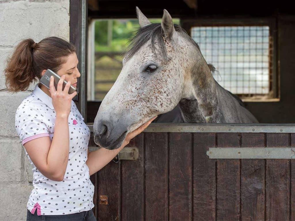 Girl on phone with pony