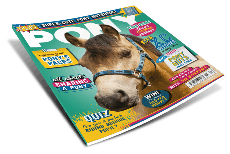 PONY Magazine October 2020