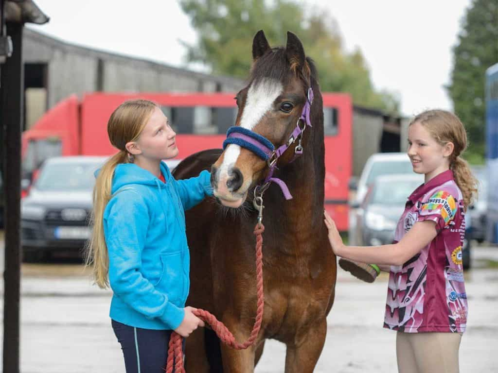 Sharing a pony