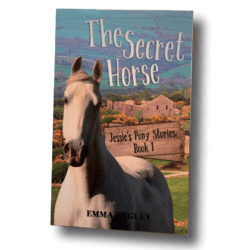 The Secret Horse book