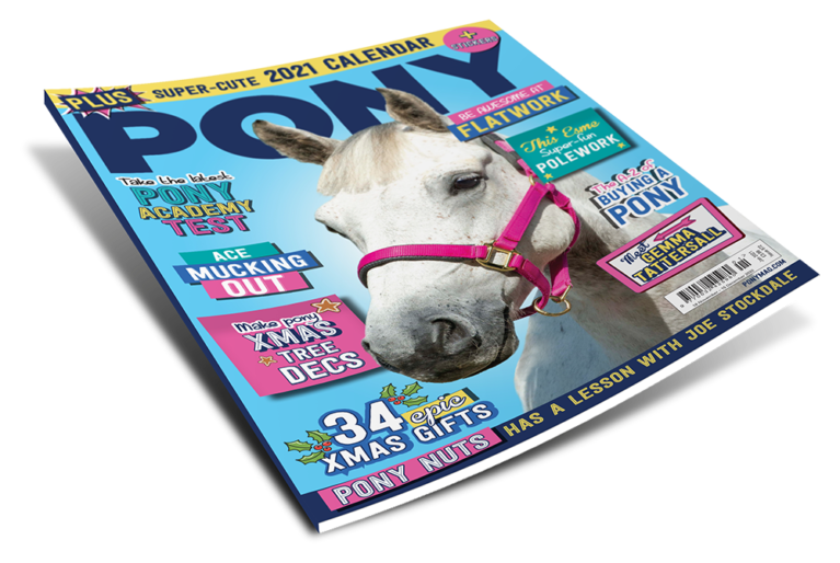 PONY January 2021 Magazine