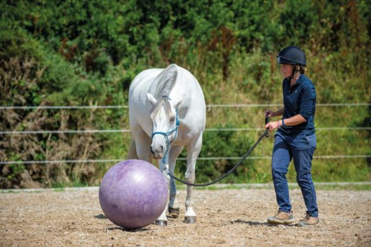 Emma Massingale etching her pony to push a ball