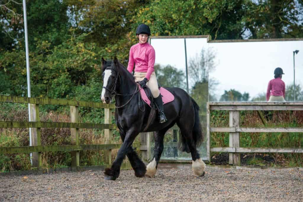 Pony riding suppling exercises