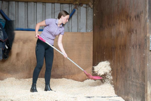 Mucking out pony's stable