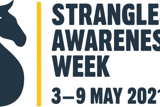 Strangles awareness week 2021