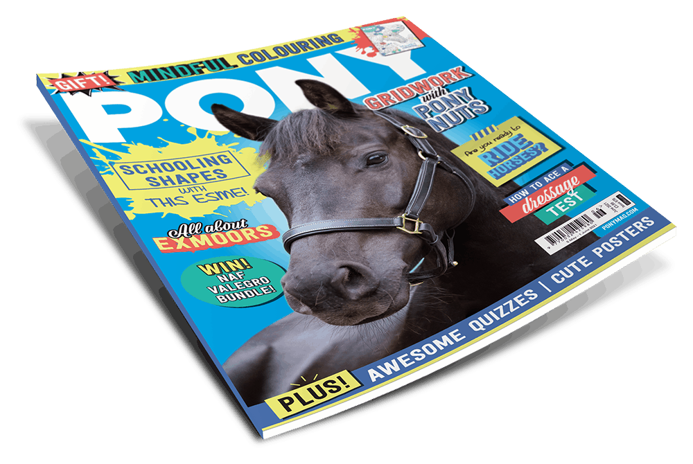 PONY Magazine - June 2021