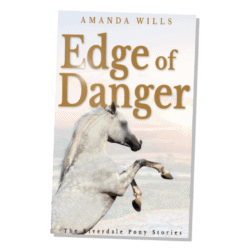 Amanda Wills, The Edge of Reason