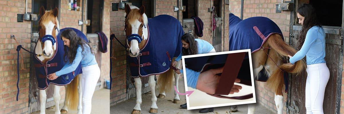 How to put a rug on a pony