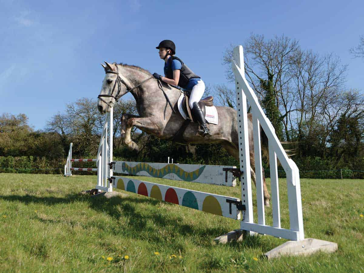 Showjump fence with planks
