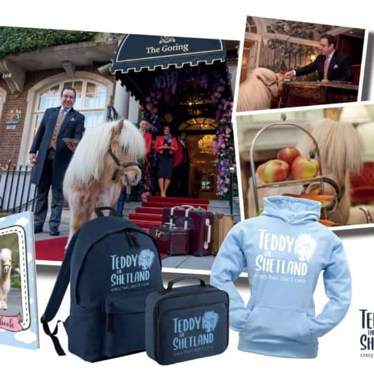 afternoon tea with Teddy the Shetland at the Goring Hotel, plus a Teddy prize bundle