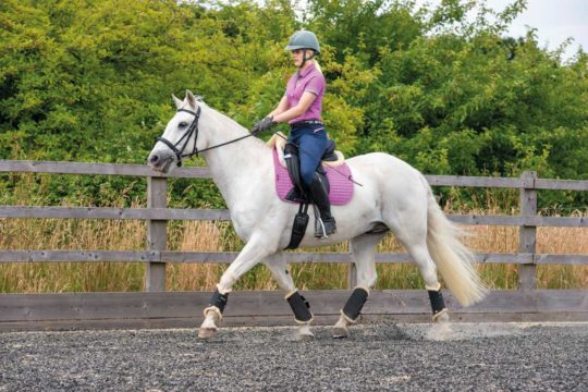 This Esme rider stretches