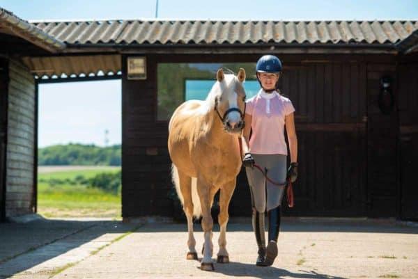 Barefoot pony