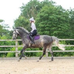 This Esme October canter